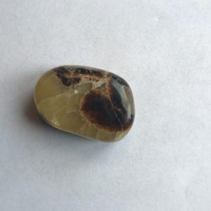 Septaria galet ovale 5.5 cm