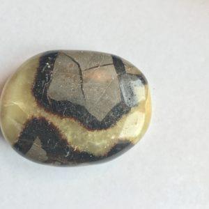 Septaria galet ovale 6.4 cm